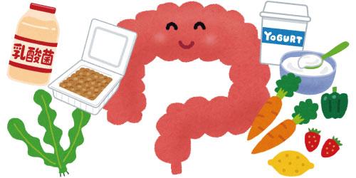 環境 整える 内 腸